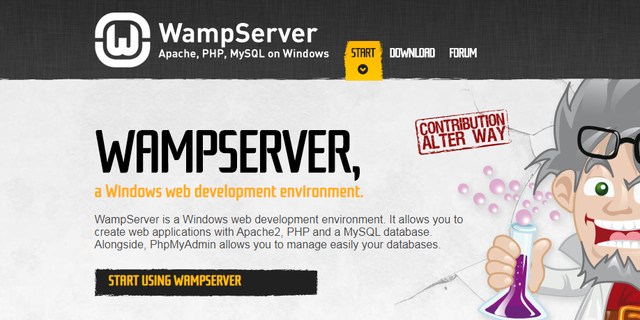 How to install WampServer?